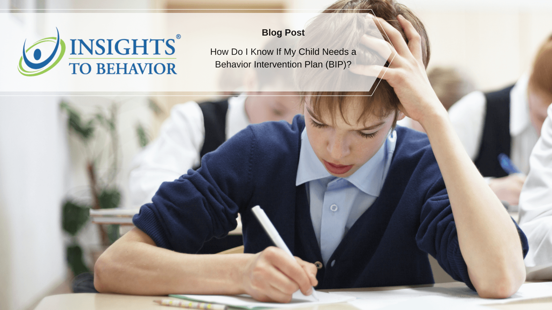 Insights to behavior blog post image template (17)